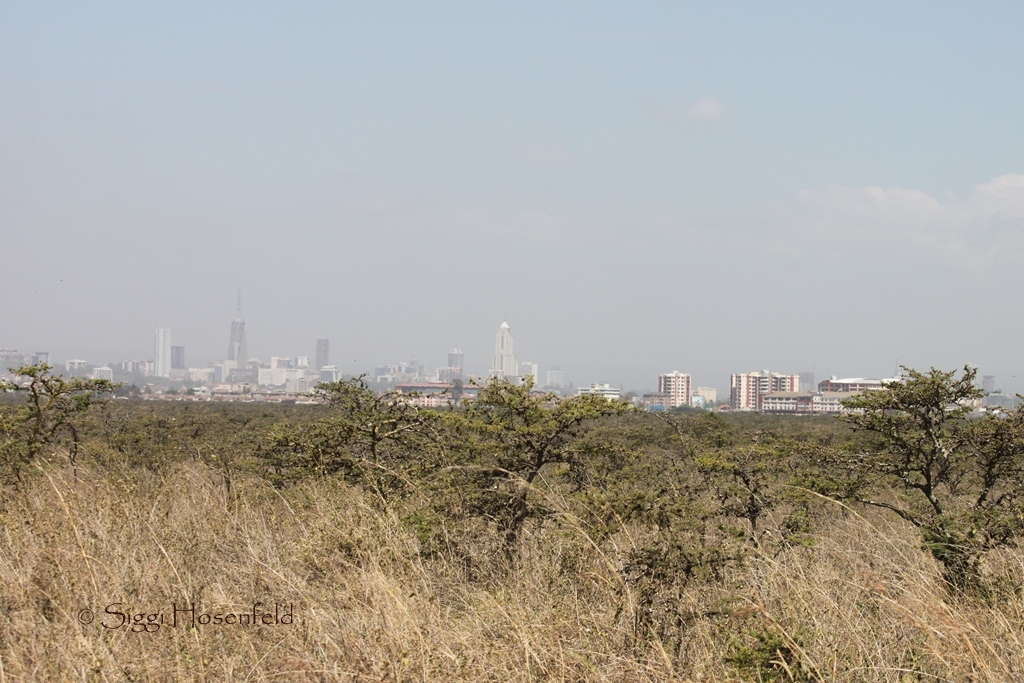 Nairobi from the Park