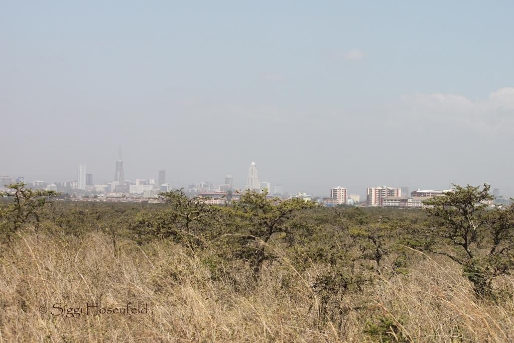 Nairobi from the Park
