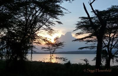 Sunset over Lake Naivasha