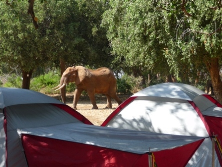 Ndololo Campground